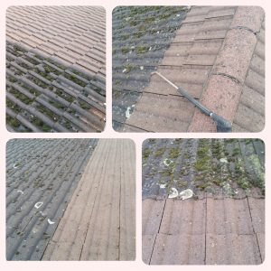 Roof Cleaning Lucan