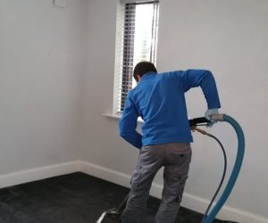 Carpet CleanerRental Vs Professional Carpet Cleaning Service Carpet Cleaning Hire Vs Professional Carpet Cleaner Hire Vs Professional Carpet Cleaning Service Kildare Carpet Cleaning